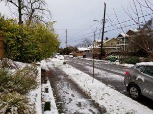 1st-snow-2016-02